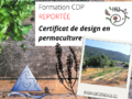 REPORT cours permaculture 2020